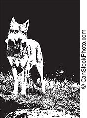 wolf - vector file of a wolf