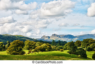 The Langdale Pikes viewed from Latterbarrow - The Langdale...