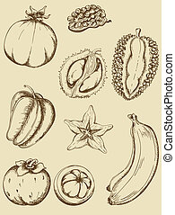 Vintage fruits - set of vintage vector ripe tropical fruits