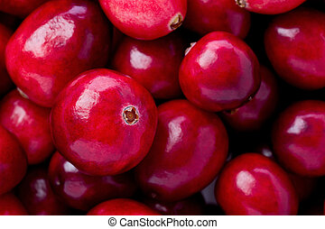 Cranberries - Background texture of a pile of whole...