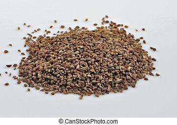apio, semillas