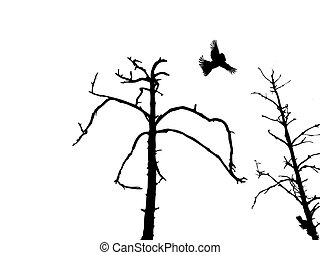 silhouette dry tree and birds isolated on white background...