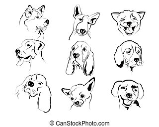 Dogs faces - Set of different dogs friendly graphic faces...
