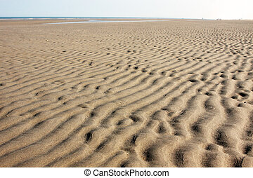 the seabed at low tide - view on textured seabed at low tide