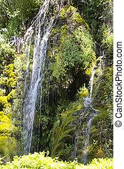 cascades between the vegetation