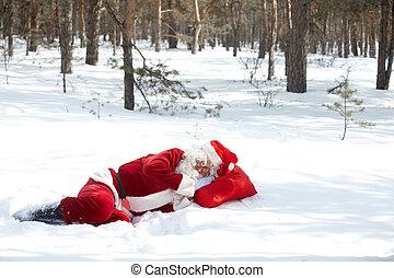 Living in the wood  - Santa Claus sleeping in winter wood