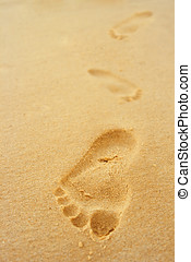 footsteps - Footsteps in the sand.