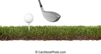crosscut green with golfball - cross section of grass with...