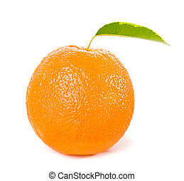 orange fruits with green leaves