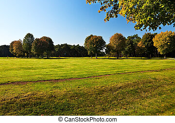 Autumn view at park with grass, trees under blue sky.
