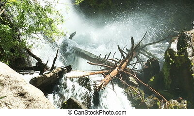 Mountain river - Water stream in a forest. Patagonia,...