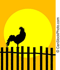 Rooster on the fence - Rooster silhouette on a fence...