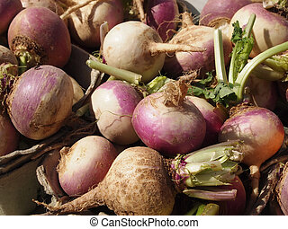 Turnips - Freshly pulled turnips for sale at a local...