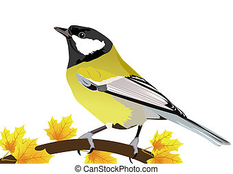 Tit-winter bird on a branch of maple The illustration on...