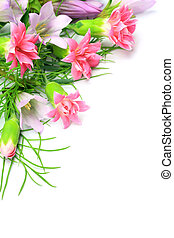 carnation and gentian - I took many carnations and gentians...