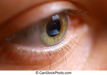 reflexión, computador portatil, ojo