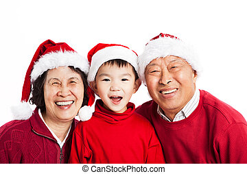 Asian grandparents celebrating Christmas - A shot of Asian...