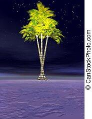 palmtree - landscape and palmtree