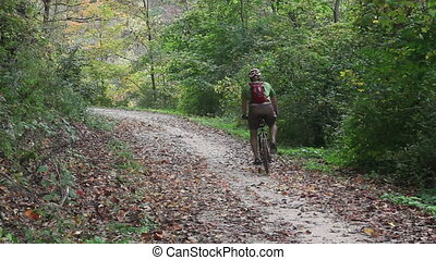 Biker on a forest trail - Unrecognizable biker on a forest...