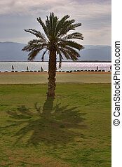 Midday. -  A medical beach on the Dead Sea in Israel