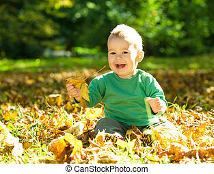 Little boy is playing in autumn park