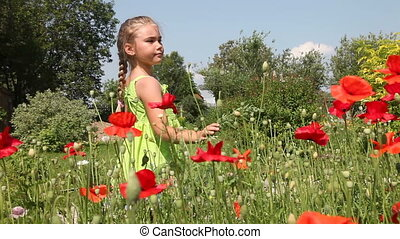 Little girl in poppy field - Little blonde girl in the field...