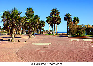 Palm avenue on the bank of the Spanish city of Adra