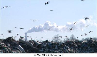 garbage dump 2 - garbage dump