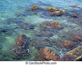 beautiful marine shallow water with a clean and transparent...