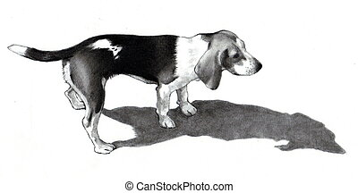 Pencil Drawing Of A Beagle Dog - A realism pencil drawing of...