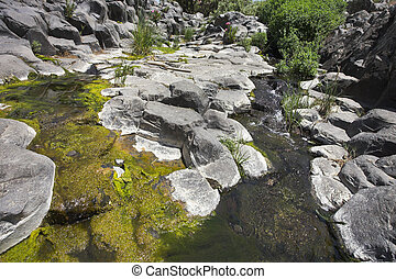 Green ooze - Canyon with cut basalt walls and a stream with...