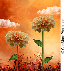 Dahlia on a fabulous sunset - Dahlia composition on a...