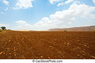 Plowed Field Against the Rocky Hills of Samaria, Israel