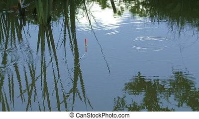 Bobber floating on a pond - Bobber floating on a pond with...