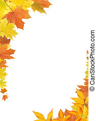 Fall Leaves Border - Nice border made from color falling...