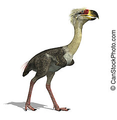 Phorusrhacos Longissimus - This large, flightless...