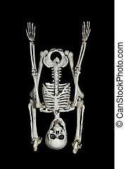 Halloween Headstand - Skeleton doing a headstand