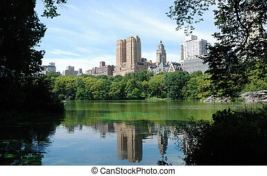 View from Central Park