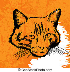 cat drawing vector on grunge background
