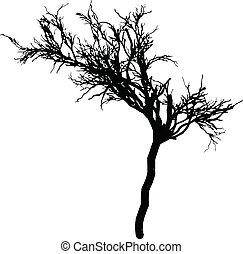 tree silhouette vector - tree without leaves silhouette...