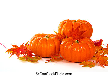 Close up composition of pumpkins and leaves on the table