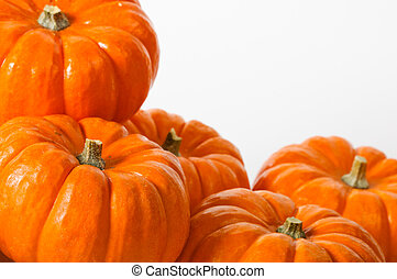 Close up composition of pumpkins on a white background.