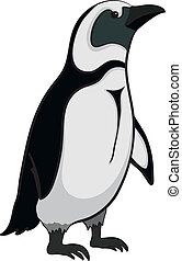 Emperor penguin - Antarctic black and white emperor penguin...