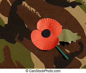 Poppy worn on combat jacket