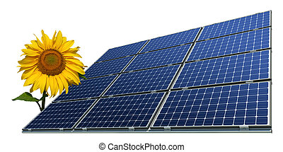 Solar panels and sunflower - Mono-crystalline solar panels...