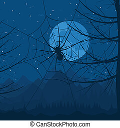 Spider at night - Spider on a web against the night sky A...