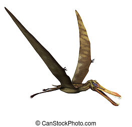 Anhanguera Dinosaur in Flight - The Anhanguera was a...