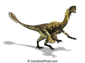 Citipati - Bird or Dinosaur? - The Citipati is a bird-like...