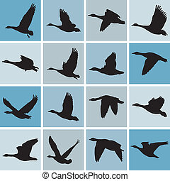 Wild geese pattern - vector illustration wild geese...