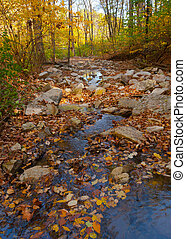 Fall in Cliff Cave Park - Spring waters flow from Cliff Cave...